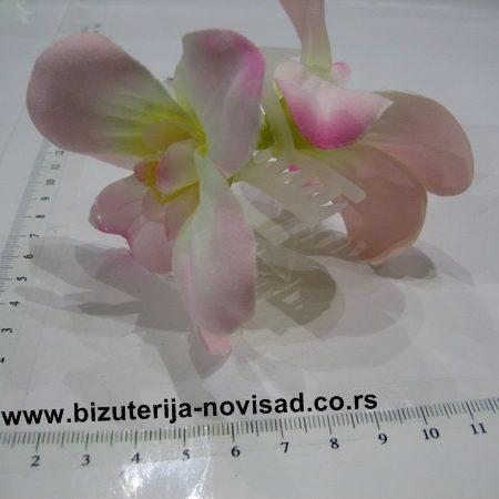 cvetne snale (5)